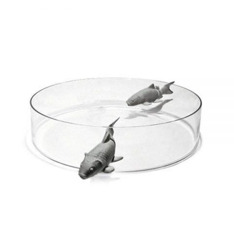 vaso-illusion-fish